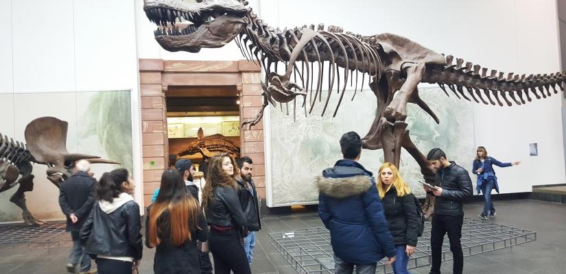 Besuch Senckenberg Museum – Frankfurt am Main